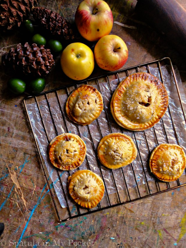 The flaky buttery crust filled with a cinnamon scented apple filling should definitely be on your to-bake list this winter!