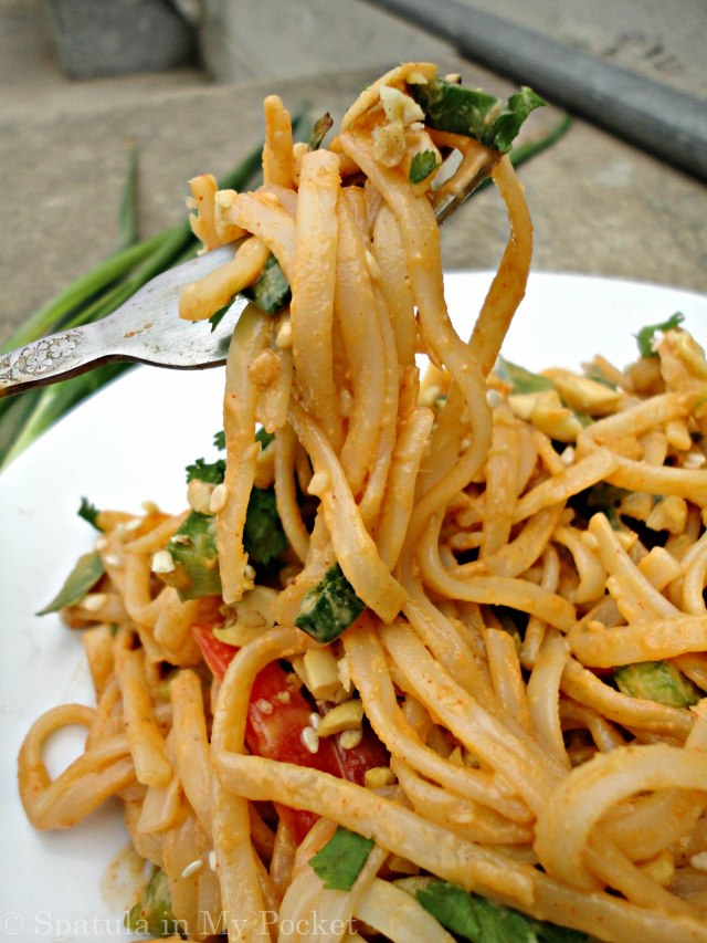 If you're, in this dreaded cold, coveting summer like me, then this is the recipe to make>> Cold Sesame Noodle Salad with Spicy Peanut Sauce. A simple clean recipe, but big on flavors.